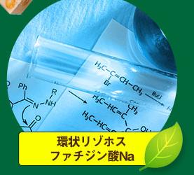 環状リゾホスファチジン酸Na